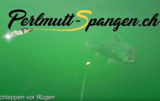 Schleppen mit Perlmutt Spangen auf Lachs